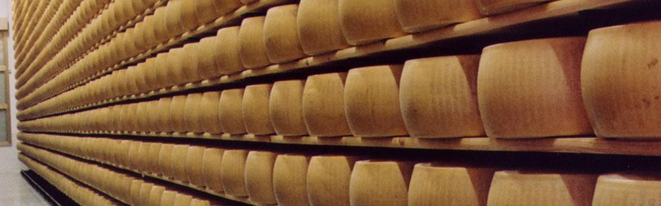 parmigiano reggiano manifestocultura